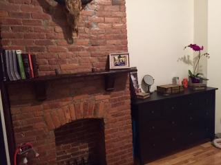 Huge Beautiful Duplex with Backyard and Hammoc, Brooklyn