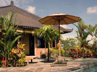 Devi's Place Ubud- great views Bamboo Bungalow