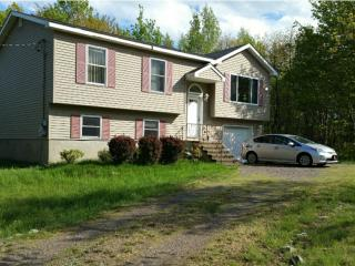 Spacious home in Pocono Mountains, 3bd, Pool Table, Long Pond