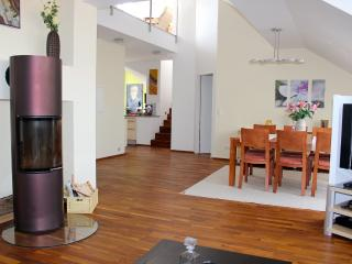 Living, dining room with fireplace