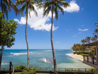 Diamond Head Ocean front crown jewel, Kahala