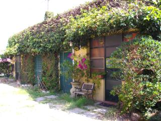 Grazioso miniappartamento a due passi da Pisa e dal mare