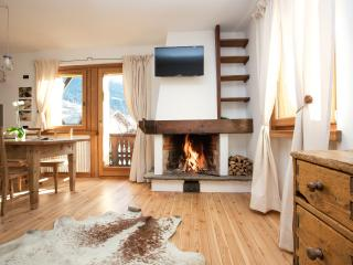 NEW HOUSE BERTA apartment surrounded by nature, Bormio