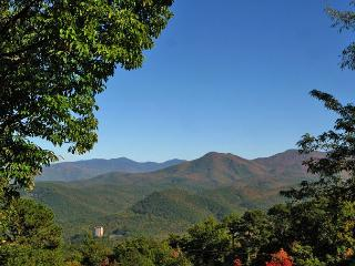 A Bear's View  Near Ober Ski Resort Hot Tub Pool Access    Free Nights, Gatlinburg