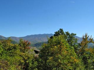 Gatlinburg Overlook  City & Mtn Views  Hot Tub  4 Jacuzzis Free Nights