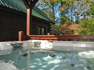 Laurel Lodge   Hot Tub Theater Game Room Yard WiFi Privacy Free Nights, Gatlinburg