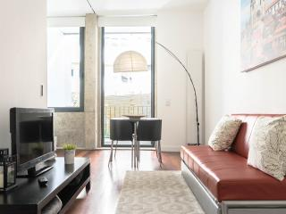 Galerias Paris Downtown - Se - studio apartment, Porto