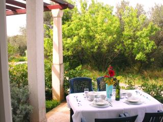 Comfortable apt, 8 sqm terrace, 300m from beach, Supetar