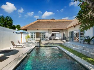 A spacious sunny villa with pool in a lush garden