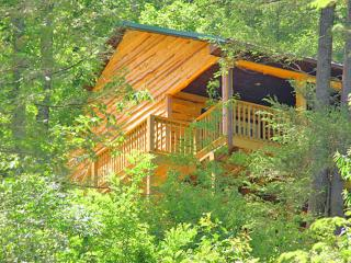 Appalachian Mountain Vacation Cabin- Bristol VA/TN