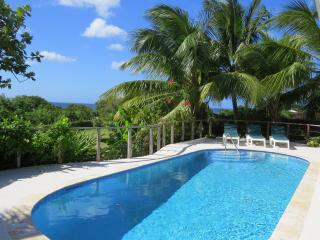 Seaberry Tropical Style Villa Close to the beach, Speightstown