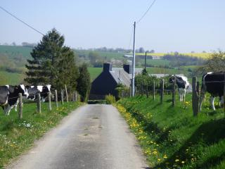 Approaching the house and Kestrel Cottage