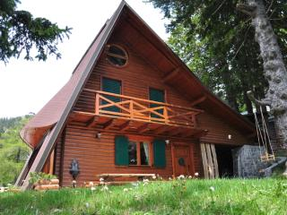 Chalet Alpinka 1 - at 1500m on Krvavec mountain, Begunje na Gorenjskem