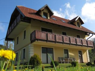 Villa Planina in Kranjska Gora - First Floor