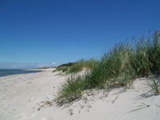 Strand und Düne