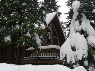 Heinrichs House - Upscale Mountain Retreat, 4 bedroom, 3.5 bath, sleeps 12.