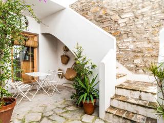Casco Antiguo con azotea y jardín