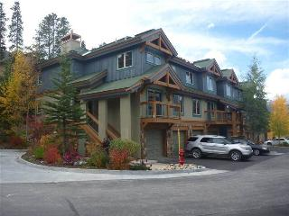 Economic Ski In/Out Access 2 Bedroom Condo - Los Pinos E-11, Breckenridge