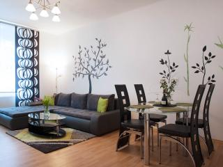 Lovely, beautiful, centric apartment Prague