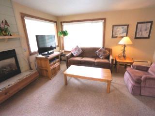Economically Priced  1 Bedroom  - 1243-21369, Breckenridge