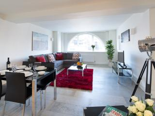 Shoreditch One - Two Bedroom Apt 2, Londres