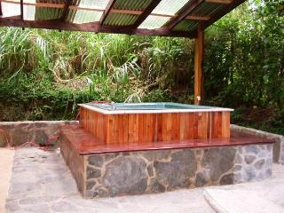 Hot Tub and High Speed WiFi. Walk to the Reserve!, Monteverde Cloud Forest Reserve