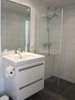Bathroom (shower) - De Kastanje Ouddorp