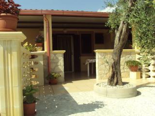 ingresso dell'appartamentino con albero di ulivo proprio all'entrata
