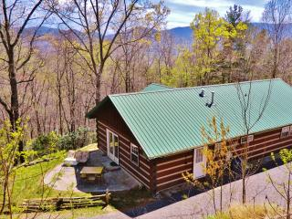 Charming LOG CABIN,FIREPLACE,PRIVATE,Mountain VIEW | 20min to Downtown Asheville