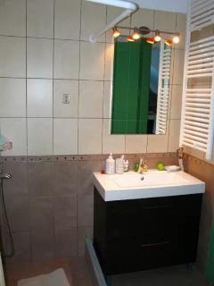 The bathroom of the  ground floor's master bedroom.