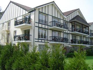 appartement 3* piscine, tennis , dans résidence standing-Hôtel du Parc, Hardelot Plage