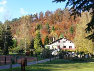 Gîte de la vallée en pleine forêt des vosges nord, Meisenthal