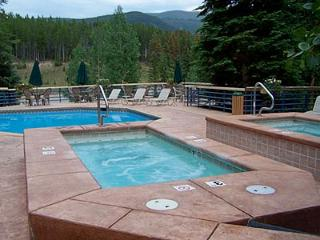 Ski In/Ski Out Studio Condo Fully Updated Sleeps 4