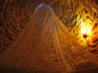 Antico Trullo Salentino in un uliveto - Pescoluse