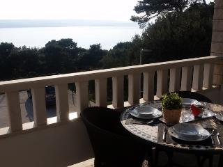 Apartments Ursic - A2 with open sea view I
