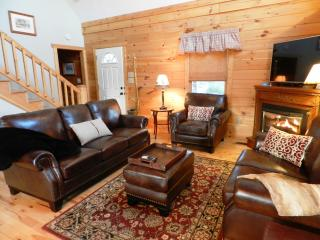 Beautifully furnished living area with leather furniture, gas fireplace.