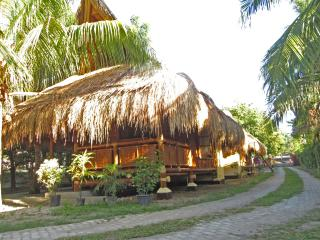 Subida Vacation Homes - Bamboo Uno, Dumaguete City