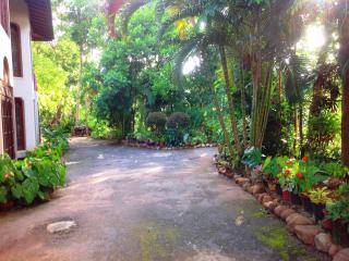 Garden , front