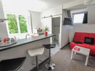 Espace ouvert cuisine et salon