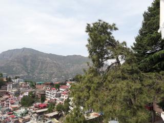 Solan Valley View Deluxe Suite