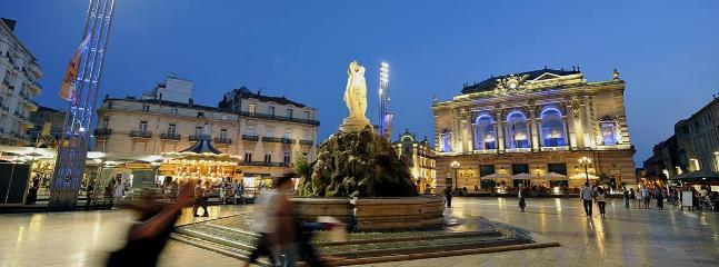 Nantes, magnifique ville attrayante et culturelle aux portes du logement