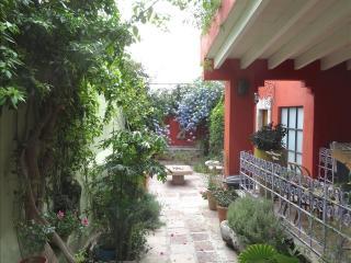 Casa Aldama One Block from the Jardin