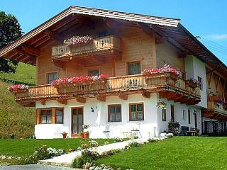 Gaisbergmoos, Kirchberg