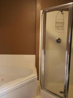 Glass master bath 'look out' shower with double jacuzzi bathtub!