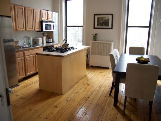Park slope duplex with private garden, Brooklyn