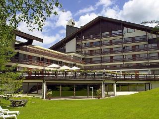 Birkenwald, Seefeld in Tirol