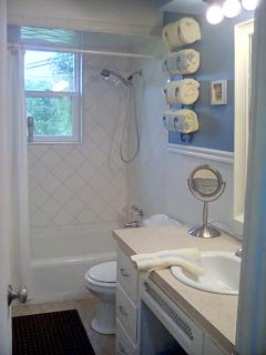 Main bath- shower/tub
