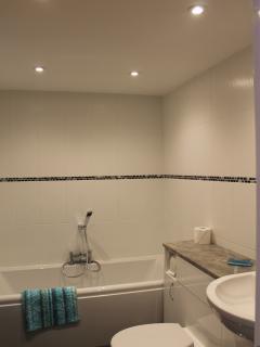 Downstairs bath en-suite to the double bedroom room
