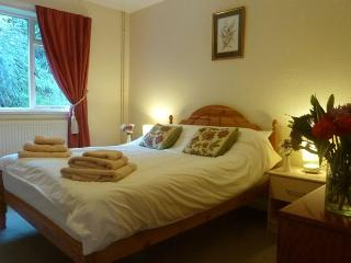Paddocks Holiday Cottages -  Japonica, Symonds Yat
