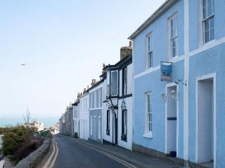 Coast House Cottage - Milly & Martha, St Ives